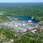 Forestry giant joins Lund professor's tree-to-textiles venture