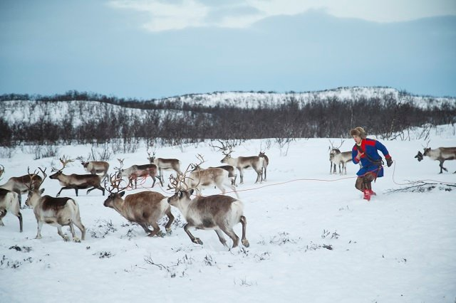 Why Sweden marks Sami National Day today