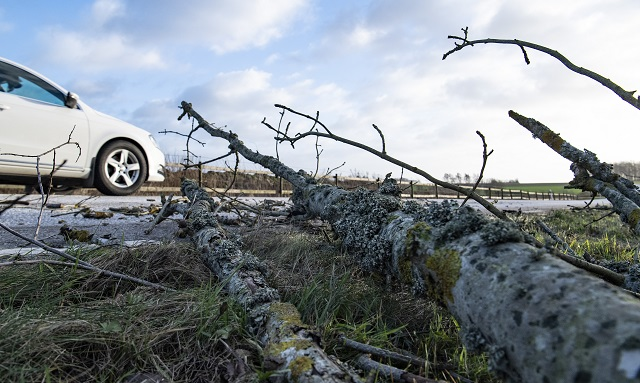 Trains cancelled as winds batter southern Sweden