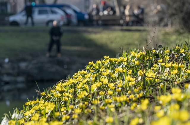 Spring has now arrived in most of southern Sweden
