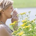 QUIZ: What's causing your allergies in Sweden?