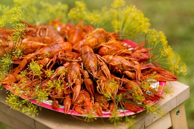 Sweden's crayfish season begins: Here's what you need to know