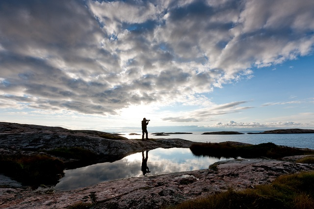Hen: What a three-letter word tells us about Swedish culture