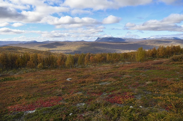 Autumn has arrived in northern Sweden