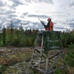 Six things you need to know about hunting in Sweden