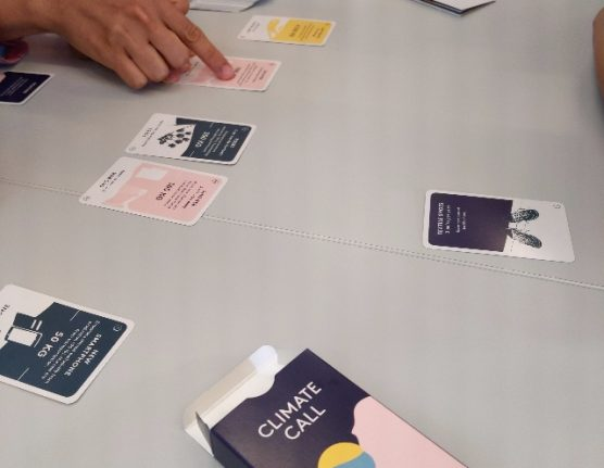 Have you played this Swedish card game for climate action?