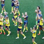 Nordic countries to launch joint bid to host 2027 World Cup