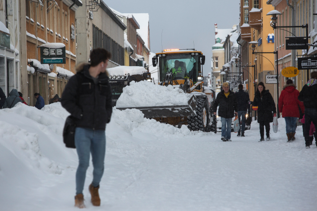 'It's every man for himself': A foreigner's survival guide to the Swedish winter