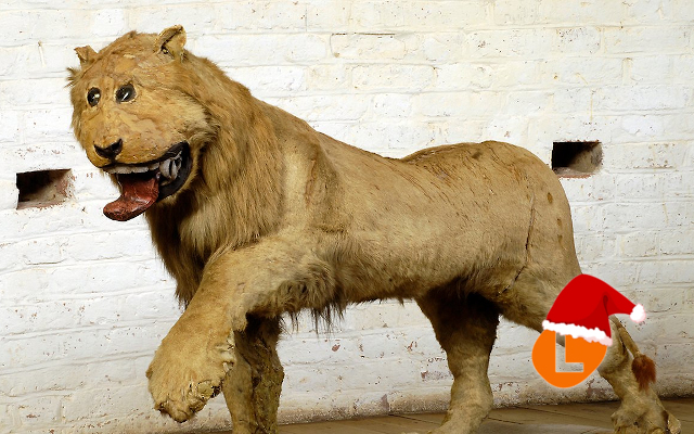 #AdventCalendar: The story behind Sweden's most bizarre piece of taxidermy