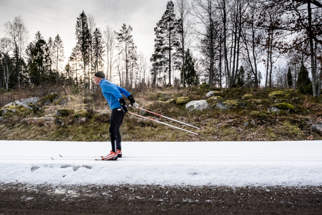 Where in Sweden should you go to find snow today?