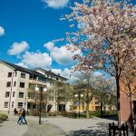 Swedish property prices rose in May – here's by how much