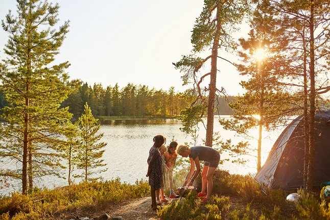Ticks in Sweden: How to avoid them and protect yourself