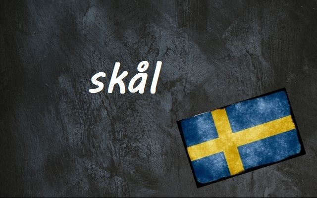 Swedish word of the day: skål