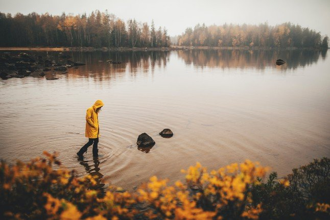 Seven amazing autumn walks in southern Sweden
