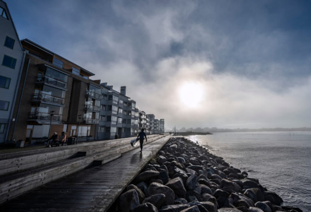 Sweden's unusually mild autumn sets spate of November records