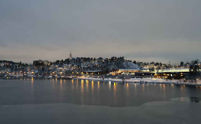 SWEDEN IN PICTURES: Your best snow snaps